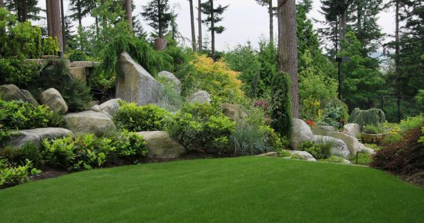 Rock garden designs ideas