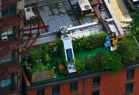 Rooftop vegetable gardens decorating