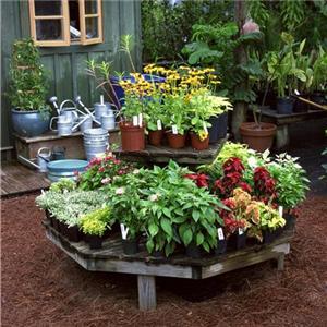 Small easy garden ideas decor