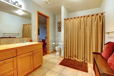 Cool shower curtains interior