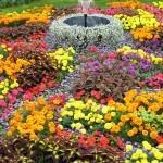 Outdoor garden fountains decor