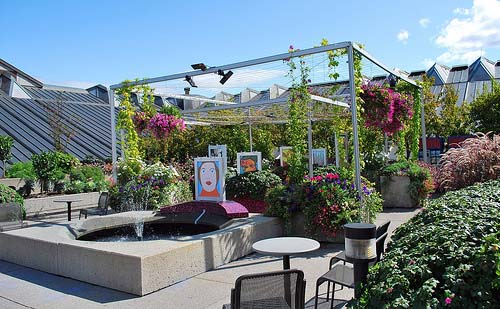 Roof top gardens ideas