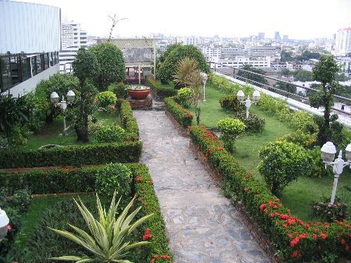 Vegetable garden in roof decor