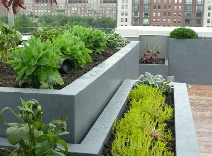Vegetable garden in roof ideas