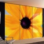 Bifold closet doors decor